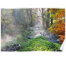 Buchan Creek East Gippsland Vic. Poster