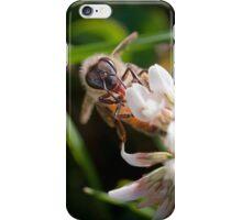 Clover Bee iPhone Case/Skin