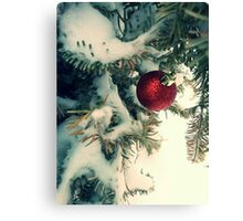 Red in White  Canvas Print