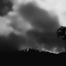 """The Storm is coming"" in B&W by Imi Koetz"