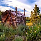 Old Lumber Mill Cabin by James Eddy
