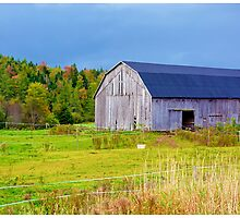 Nova Scotia Barn in Autumn by BrasdOrLife