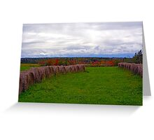 Hay Fields of Nova Scotia Greeting Card