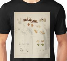 The botany of the Antarctic voyage of H M  discovery ships Erebus and Terror in the Years 1839 1843 Joseph Dalton Hooker V1 146 Unisex T-Shirt