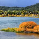 Oxbow Bend on Snake River by Charles Kosina