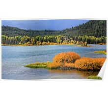 Oxbow Bend on Snake River Poster