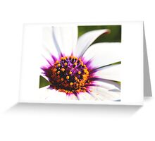 untitled xxi Greeting Card