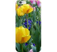 Bright tulips iPhone Case/Skin