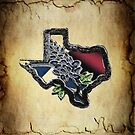 Texas  ~ Pillow by Penny Odom