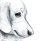 Dachshund Lovers - Doxie Puppy Sketch by dvampyrelestat