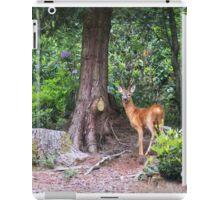 Roe Deer iPad Case/Skin