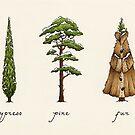 Fur Tree by Mariya Olshevska