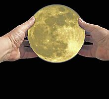 There was a full Moon last night so I went outside and captured it. by albutross