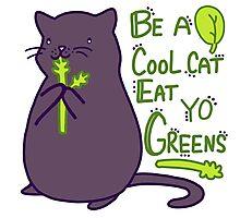 Green Kitty! Photographic Print