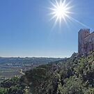 View from Óbidos, Portugal by Steve