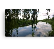 Willow River Canvas Print