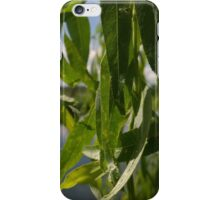 willow over river norwich iPhone Case/Skin