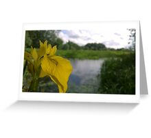 Flower over river Greeting Card