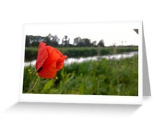 Poppy over river in norfolk Greeting Card
