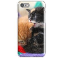 Patchwork kittens iPhone Case/Skin