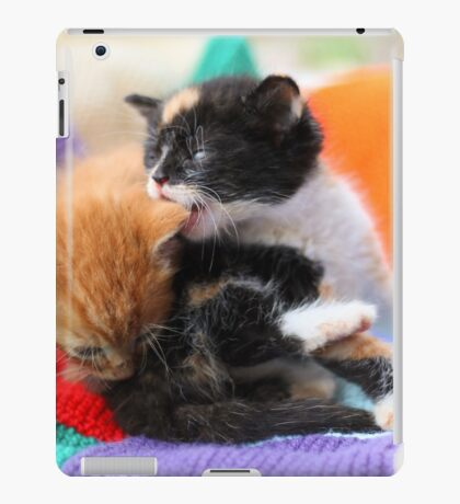 Patchwork kittens iPad Case/Skin