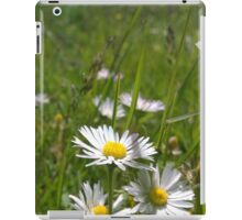 Daisies on river in norfolk iPad Case/Skin