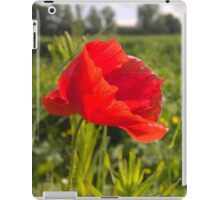Poppy on river in norwich iPad Case/Skin
