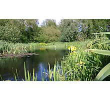 Lake midday norwich Photographic Print