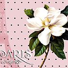 Sophisticated Parisian White Magnolias black polka dots, Eiffel Tower France by Glimmersmith