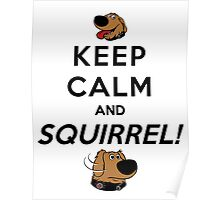Keep Calm and SQUIRREL Poster