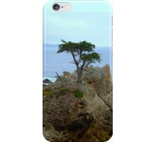 The Lone Cypress Along 17-Mile Drive iPhone Case/Skin