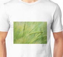 Wheat in the summer sun Unisex T-Shirt