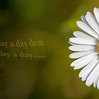 I'll give you a daisy a day dear... by Yvonne Jetson