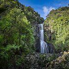 Kitekite Falls by Ian Rushton