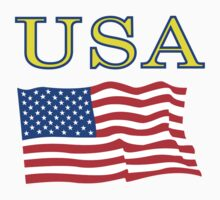 USA Flag by denip