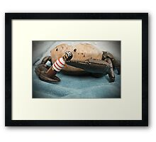 Pirate of the Crabibeen Framed Print