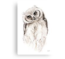 Australian Owl Canvas Print