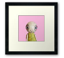 Sheldon The Turtle - Pink Framed Print