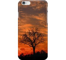Single Sunset Tree iPhone Case/Skin