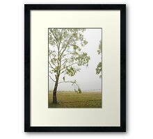 Tree in the Fog Framed Print