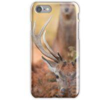 Red deer stags iPhone Case/Skin