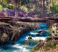 Lesmurdie Falls by clappmichelle
