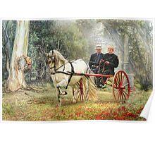 Bushland Poppies Poster