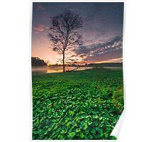 Early Morning At Lake Lorne Poster