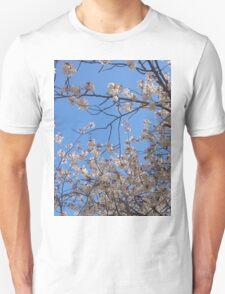 Japanese Cherry Blossom (Sakura) 2 T-Shirt