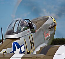 P-51D Mustang 'Janie' by Chris Tait