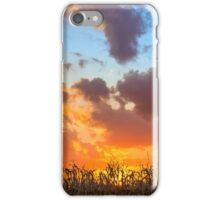 Glorious Harvest - Indiana Sunset iPhone Case/Skin