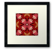 Kaleidoscope Original Framed Print