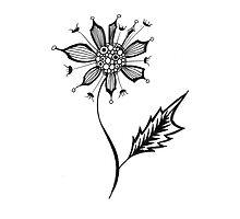 A Single Flower by KeLu