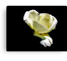 Simply One Canvas Print